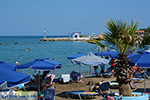 JustGreece.com Faliraki Rhodes - Island of Rhodes Dodecanese - Photo 219 - Foto van JustGreece.com