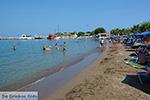 JustGreece.com Faliraki Rhodes - Island of Rhodes Dodecanese - Photo 222 - Foto van JustGreece.com