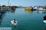 JustGreece.com Faliraki Rhodes - Island of Rhodes Dodecanese - Photo 239 - Foto van JustGreece.com