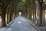 JustGreece.com Filerimos Rhodes - Island of Rhodes Dodecanese - Photo 373 - Foto van JustGreece.com