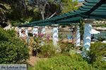 Kalithea Rhodes - Island of Rhodes Dodecanese - Photo 528 - Foto van JustGreece.com