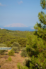 JustGreece.com Kritinia Rhodes - Island of Rhodes Dodecanese - Photo 750 - Foto van JustGreece.com
