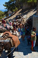 Lindos Rhodes - Island of Rhodes Dodecanese - Photo 971 - Photo JustGreece.com