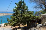JustGreece.com Lindos Rhodes - Island of Rhodes Dodecanese - Photo 974 - Foto van JustGreece.com