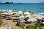 JustGreece.com Pefkos Rhodes - Island of Rhodes Dodecanese - Photo 1165 - Foto van JustGreece.com