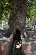 JustGreece.com Profitis Ilias Rhodes - Island of Rhodes Dodecanese - Photo 1176 - Foto van JustGreece.com