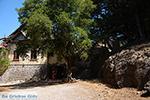 JustGreece.com Profitis Ilias Rhodes - Island of Rhodes Dodecanese - Photo 1247 - Foto van JustGreece.com