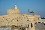 Rhodes town - Rhodes - Island of Rhodes Dodecanese - Photo 1507 - Photo JustGreece.com