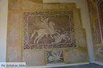 JustGreece.com Rhodes town - Rhodes - Island of Rhodes Dodecanese - Photo 1657 - Foto van JustGreece.com