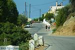 JustGreece.com Siana Rhodes - Island of Rhodes Dodecanese - Photo 1761 - Foto van JustGreece.com