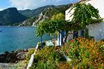 JustGreece.com Avlakia Samos | Greece | Greece  Photo 18 - Foto van JustGreece.com