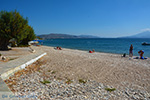 JustGreece.com Ireon Samos | Greece | Greece  Photo 38 - Foto van JustGreece.com
