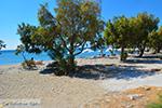 JustGreece.com The beaches Kampos Samos and Votsalakia Samos | Greece Photo 19 - Foto van JustGreece.com