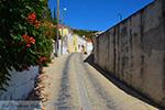 JustGreece.com Pandrosso Samos | Greece | Photo 8 - Foto van JustGreece.com