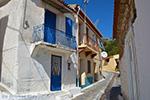 Pandrosso Samos | Greece | Photo 18 - Photo JustGreece.com