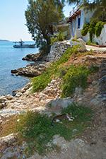 JustGreece.com Psili Ammos Mykali Samos | Greece | Photo 10 - Foto van JustGreece.com