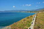 JustGreece.com Pythagorion Samos | Greece | Photo 00024 - Foto van JustGreece.com