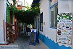 JustGreece.com Vourliotes Samos | Greece | Photo 9 - Foto van JustGreece.com