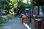 JustGreece.com Vourliotes Samos | Greece | Photo 14 - Foto van JustGreece.com