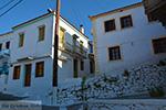 JustGreece.com Vourliotes Samos | Greece | Photo 19 - Foto van JustGreece.com