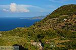 JustGreece.com Vourliotes Samos | Greece | Photo 21 - Foto van JustGreece.com