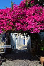 JustGreece.com Megalochori Santorini | Cyclades Greece | Photo 12 - Foto van JustGreece.com