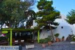 JustGreece.com Megalochori Santorini | Cyclades Greece | Photo 51 - Foto van JustGreece.com