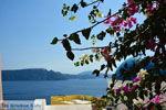 JustGreece.com Oia Santorini   Cyclades Greece   Photo 1019 - Foto van JustGreece.com