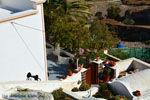 Pyrgos Santorini | Cyclades Greece | Photo 107 - Photo JustGreece.com
