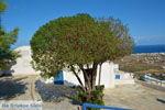 JustGreece.com Pyrgos Santorini | Cyclades Greece | Photo 118 - Foto van JustGreece.com