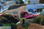 JustGreece.com Pyrgos Santorini | Cyclades Greece | Photo 121 - Foto van JustGreece.com