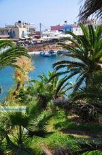 Sissi | Lassithi Crete | Photo Greece  nr 33 - Photo JustGreece.com