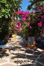 JustGreece.com Sissi | Lassithi Crete | Photo Greece  nr 37 - Foto van JustGreece.com