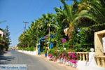 Sissi | Lassithi Crete | Photo Greece  nr 58 - Photo JustGreece.com