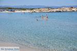 Beaches and nature near Vourvourou | Sithonia Halkidiki | Greece  Photo 24 - Photo JustGreece.com
