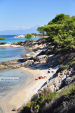 JustGreece.com Beaches and nature near Vourvourou | Sithonia Halkidiki | Greece  Photo 30 - Foto van JustGreece.com