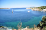 JustGreece.com nature Beaches near Sykia and Paralia Sykias | Sithonia Halkidiki | Photo 14 - Foto van JustGreece.com