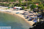 JustGreece.com nature Beaches near Sykia and Paralia Sykias | Sithonia Halkidiki | Photo 17 - Foto van JustGreece.com