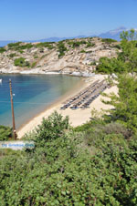 JustGreece.com nature Beaches near Sykia and Paralia Sykias | Sithonia Halkidiki | Photo 19 - Foto van JustGreece.com