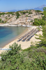 JustGreece.com nature Beaches near Sykia and Paralia Sykias | Sithonia Halkidiki | Photo 20 - Foto van JustGreece.com