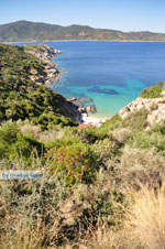 JustGreece.com nature Beaches near Sykia and Paralia Sykias | Sithonia Halkidiki | Photo 22 - Foto van JustGreece.com