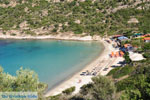 JustGreece.com nature Beaches near Sykia and Paralia Sykias | Sithonia Halkidiki | Photo 27 - Foto van JustGreece.com