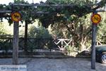 JustGreece.com Parthenonas | Sithonia Halkidiki | Greece  Photo 17 - Foto van JustGreece.com
