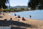 JustGreece.com Neos Marmaras | Sithonia Halkidiki | Greece  Photo 25 - Foto van JustGreece.com