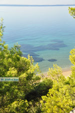 JustGreece.com Psakoudia - Gerakini | Sithonia Halkidiki | Greece  Photo 8 - Foto van JustGreece.com
