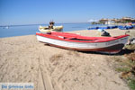 JustGreece.com Psakoudia - Gerakini | Sithonia Halkidiki | Greece  Photo 13 - Foto van JustGreece.com