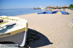 JustGreece.com Psakoudia - Gerakini | Sithonia Halkidiki | Greece  Photo 15 - Foto van JustGreece.com