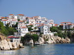 Met the boot to Skiathos town Photo 6 - Photo JustGreece.com