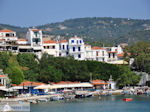 The harbour of Skiathos town Photo 5 - Photo JustGreece.com