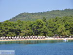 beach Koukounaries - Island of Skiathos - Photo 1 - Photo JustGreece.com